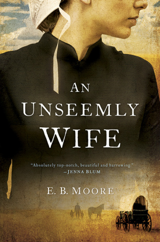 An Unseemly Wife, book review & giveaway